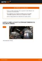 Cambio Muelle de chasis delanteras izquierda derecha LEXUS bricolaje - manual pdf en línea