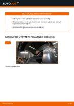 Rep-handbok LEXUS pdf