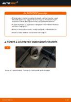 Útmutató PDF RX karbantartásáról