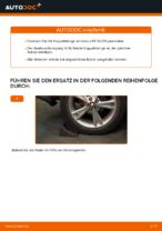 Wie der Austausch der hinteren Druckstangen beim Lexus RX XU30 funktioniert