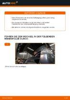 Tipps von Automechanikern zum Wechsel von LEXUS Lexus RX XU30 3.0 Ölfilter