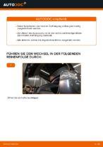 LEXUS Schraubenfeder hinten links rechts wechseln - Online-Handbuch PDF