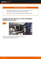 PDF Wechsel Anleitung: Bremszange BMW X5 (E53) hinten + vorne