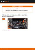 DIY-Leitfaden zum Wechsel von Zündkerzensatz beim ALFA ROMEO 159 Sportwagon (939)