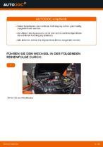 ALFA ROMEO Schraubenfeder hinten links rechts wechseln - Online-Handbuch PDF