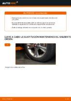 Cambio Taco de Motor delantero y trasero LEXUS RX (MHU3_, GSU3_, MCU3_): guía pdf