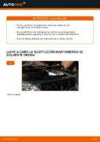 Reemplazar Amortiguador LEXUS RX: pdf gratis
