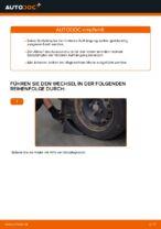 Beheben von Problemen mit RENAULT Stoßdämpfer hydraulisch und luftdruck mit unserer Anweisung