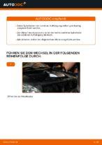 Auswechseln Fahrwerksfedern LEXUS RX: PDF kostenlos