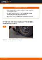 Wann Stoßdämpfer Satz austauschen: PDF Anleitung für RENAULT KANGOO (KC0/1_)