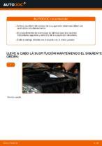 Reemplazar Muelle de chasis LEXUS RX: pdf gratis