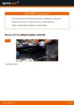 Când trebuie sa schimbi Filtru ulei VW PASSAT Variant (3C5): pdf manual