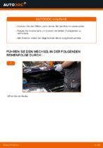 Empfehlungen des Automechanikers zum Wechsel von VW Passat 3c 2.0 TDI 16V Keilrippenriemen