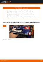 Hoe u gasveren voor het kofferbakdeksel van een VW Passat Variant 3C5 kunt vervangen