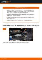W jaki sposób wymienić tylne tarcze hamulcowe w VW Passat Variant 3C5