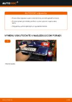 Ako vymeniť plynové vzpery veka kufra na VW Passat Variant 3C5