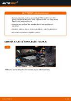 Nemokamos internetinės instrukcijos kaip atnaujinti Stabdžių diskas VW PASSAT Variant (3C5)