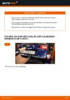 elektrisch Heckklappendämpfer VW CADDY | PDF Wechsel Tutorial