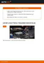 Trin-for-trin reparationsvejledning til Passat 3b5