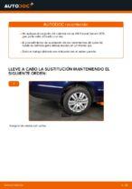 Cómo cambiar el rodamiento de cubo de la rueda trasera en VW Passat Variant 3C5
