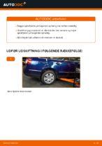 Hvordan man udskifter ophængsfjedre i bag på VW Passat Variant 3C5