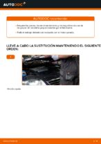 Manual de taller para Passat 3b2 en línea