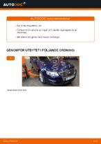 Hur du byter ut styrslagsände på VW Passat Variant 3C5