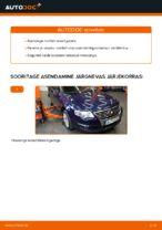 Kuidas asendada VW Passat Variant 3C5 roolilati otsi