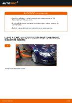 Cómo sustituir la bieleta o enlace estabilizador delantero en un VW Passat Variant 3C5