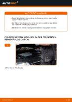 Federn austauschen VW PASSAT: Werkstatt-tutorial