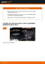 Wechseln von Fahrwerksfedern VW PASSAT: PDF kostenlos