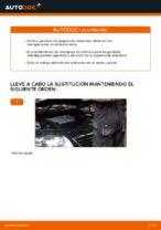 Cómo reemplazar un puntal amortiguador delantero en un VW Passat Variant 3C5