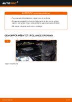 Hur man byter ut ett fjäderben fram på VW Passat Variant 3C5