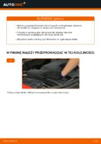 HYUNDAI SANTAMO instrukcja rozwiązywania problemów