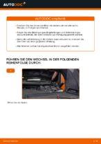 PDF Reparatur Tutorial von Ersatzteile: FORD Focus C-Max (DM2)