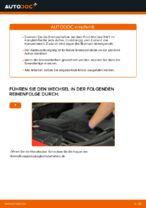 FORD Scheibenbremsen belüftet wechseln - Online-Handbuch PDF
