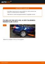 Hilfreiche Fahrzeug-Reparaturanweisung für oben vorne/hinten Spurlenker VW