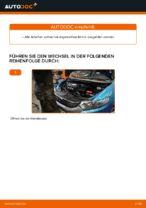 HONDA INSIGHT (ZE_) Lagerung Achskörper: Online-Handbuch zum Selbstwechsel