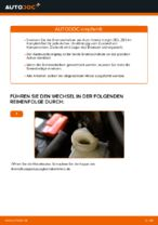 DIY-Leitfaden zum Wechsel von Bremstrommel beim HONDA INSIGHT (ZE_)