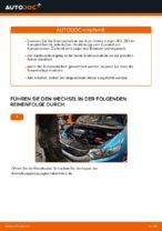 HONDA INSIGHT (ZE_) Bremssattel Reparatursatz: PDF-Anleitung zur Erneuerung