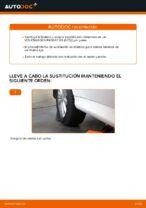 Suspensión y Brazos manuales de taller online