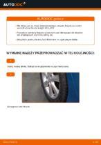 Jak wymienić łożysko piasty koła tylnego w Honda Insight ZE2_ZE3