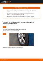 Montage Radlagersatz HONDA INSIGHT (ZE_) - Schritt für Schritt Anleitung