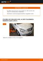 Wie Sie den Unterarm der vorderen Einzelradaufhängung am Mercedes W245 ersetzen