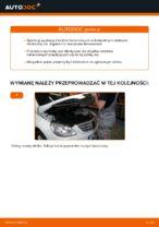Konserwacja samochodu: bezpłatna instrukcja