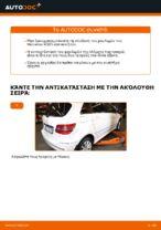 Πότε πρέπει να αλλάξει Σετ ρουλεμάν τροχού MERCEDES-BENZ B-CLASS (W245): εγχειριδιο pdf