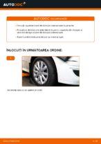 Descoperiți tutorialul nostru informativ despre soluționarea problemelor Suspensie, Tije
