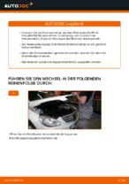 Schritt-für-Schritt-PDF-Tutorial zum Stoßdämpfer-Austausch beim MERCEDES-BENZ B-CLASS (W245)