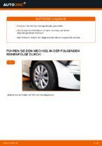 Wie Bremssattel Reparatursatz beim MERCEDES-BENZ B-CLASS (W245) wechseln - Handbuch online