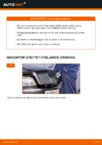Bilmekanikers rekommendationer om att byta MERCEDES-BENZ Mercedes W202 C 250 2.5 Turbo Diesel (202.128) Styrled